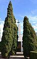 Xiprers al cementeri de Castellnou, Alt Palància.JPG