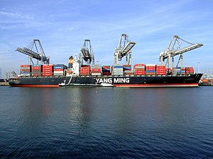 YM Pine p1, at the Amazone harbour, Port of Rotterdam, Holland 18-Jan-2005.jpg