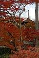 Yoshimine-dera (8255231503).jpg