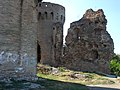 Z-1643 Srednjovjekovni grad Erdut 3.jpg