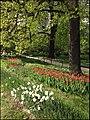Ботанический сад (Петровский огород) - panoramio (1).jpg