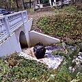 Вид на ручей у виллы Айнола, Зеленогорск.jpg