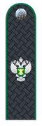 Действительный гос.советник РФ 3 класса Россельхознадзор.png