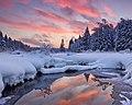 Зима в национальном парке Лосиный Остров.jpg