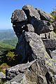 Каменный тролль - panoramio.jpg