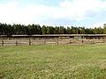 Коровник - panoramio - Oleg Seliverstov (3).jpg