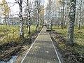 Новая пешеходная дорожка от ул.Авиационная к прудам - panoramio.jpg