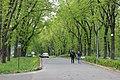 Парк імені О. С. Пушкіна IMG 5527.jpg