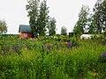 Строящийся дом в поселке УНИВЕРСИТЕТСКИЙ рядом с Академгородком Новосибирска 07.jpg