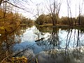 Участок левобережной части долины реки Яузы со старицей от Кольской ул. до устья реки Чермянки 04.jpg
