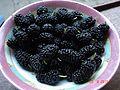 Шелковица черная (плоды).jpg