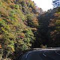 中津峡-紅葉-03 - panoramio.jpg