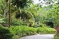 呀诺达热带雨林风光 - panoramio (9).jpg