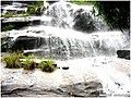 山泉泛滥 - panoramio.jpg