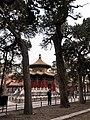 故宫御花园 - panoramio (3).jpg
