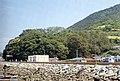 남해 미조리 상록수림(대한민국 천연기념물 제29호, Natural monument 29 of South Korea).jpg