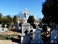 - Cmentarz Nowofarny - panoramio (16).jpg