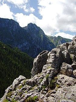 Fjell – Wikipedia