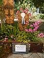 05441jfMidyear Philippine Orchid Show Quezon Memorial Circlefvf 03.JPG