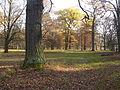 111120 Favoritepark-Herbst (2).JPG