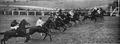 1920 Epsom Oaks start.png