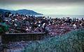 1971 - hậu quả của một cơn bão đánh vào Qui Nhơn. (9677371243).jpg