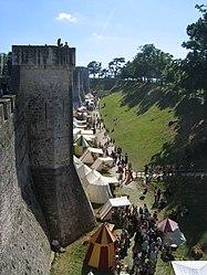 2009 - fête médiévale - Provins - vue d'ensemble3.JPG