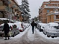 2012-02-04 After snowfall in Northern Rome 02.jpg