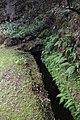 2012-10-27 12-20-39 Pentax JH (49283741281).jpg