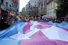 At 2014 İstanbul LGBT Pride people carry a large transgender flag.