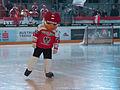20150207 1751 Ice Hockey AUT SVK 9420.jpg