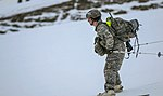 2016 US Army Alaska Winter Games 160126-A-MI003-944.jpg