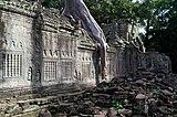 20171127 Preah Khan Angkor Cambodia 5107 DxO.jpg