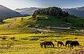 2019 - Tusheti National Park - Morning in the Upper Omalo.jpg