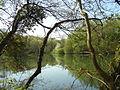 2286-00020 Parc de Woluwe.JPG