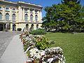 8. Bucuresti. Romania. Flori in memoriam Reginei Ana (Curtea interioara a Palatului Regal - o aripa).jpg