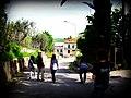 83045 Calitri AV, Italy - panoramio (5).jpg