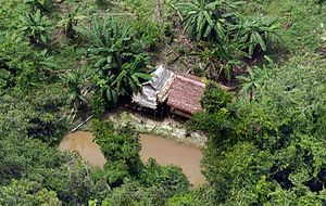Illegal drug trade in Latin America - A Brazilian cocaine production site in the Amazon rainforest.