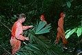 ASTRONAUT GROUP - TRAINING - JUNGLE - PANAMA.jpg