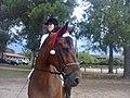 A horse named Magic.jpg
