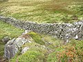 A sheep track around a rock outcrop - geograph.org.uk - 544932.jpg