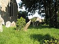 A verdant churchyard at St James, Cardington - geograph.org.uk - 1445907.jpg