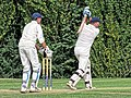 Abridge CC v High Beach CC at Abridge, Essex, England 35.jpg