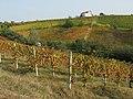 Acqui Terme (Italy) (23602719279).jpg
