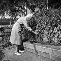 Aino Sibelius puutarhassa, 1940-1945, (D2005 167 6 109) Suomen valokuvataiteen museo.jpg