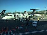 Air New Zealand Link Q300 ZK-NESat WLG (33007135371).jpg