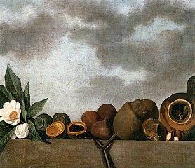 Still-life of various of Brazilian nuts