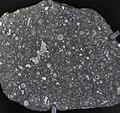 Allende meteorite.jpg