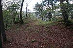 Allerburg (Dautphetal) (019).JPG
