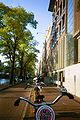 Amsterdam bikes.jpg